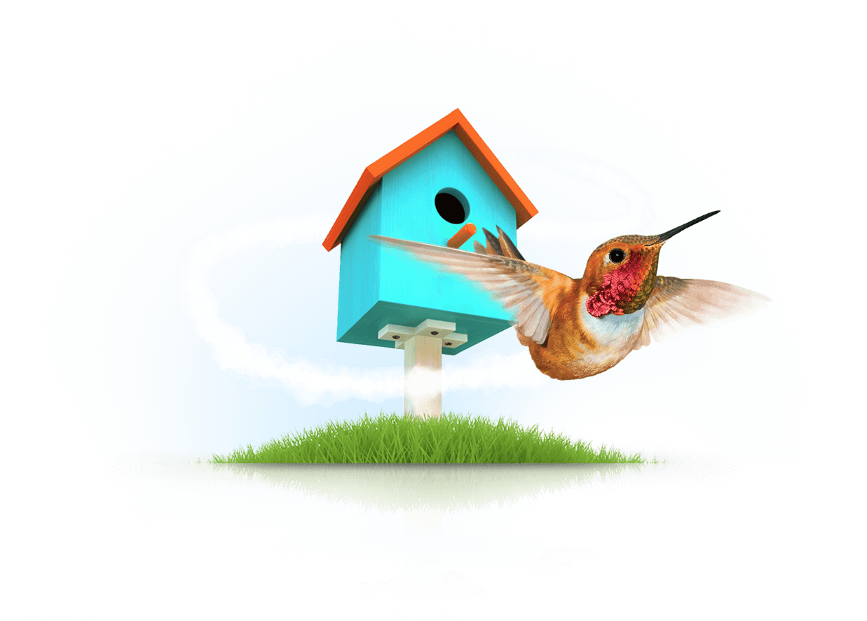 Getting the sweetest home loan. Like the hummingbird who seeks out only the sweetest nectar
